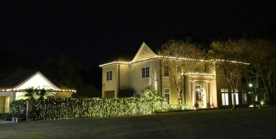 Residential Landscape Holiday Lighting White