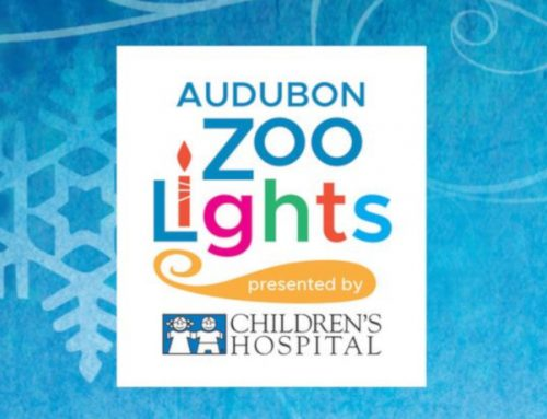 Check Out Audubon Zoo Lights This Holiday Season